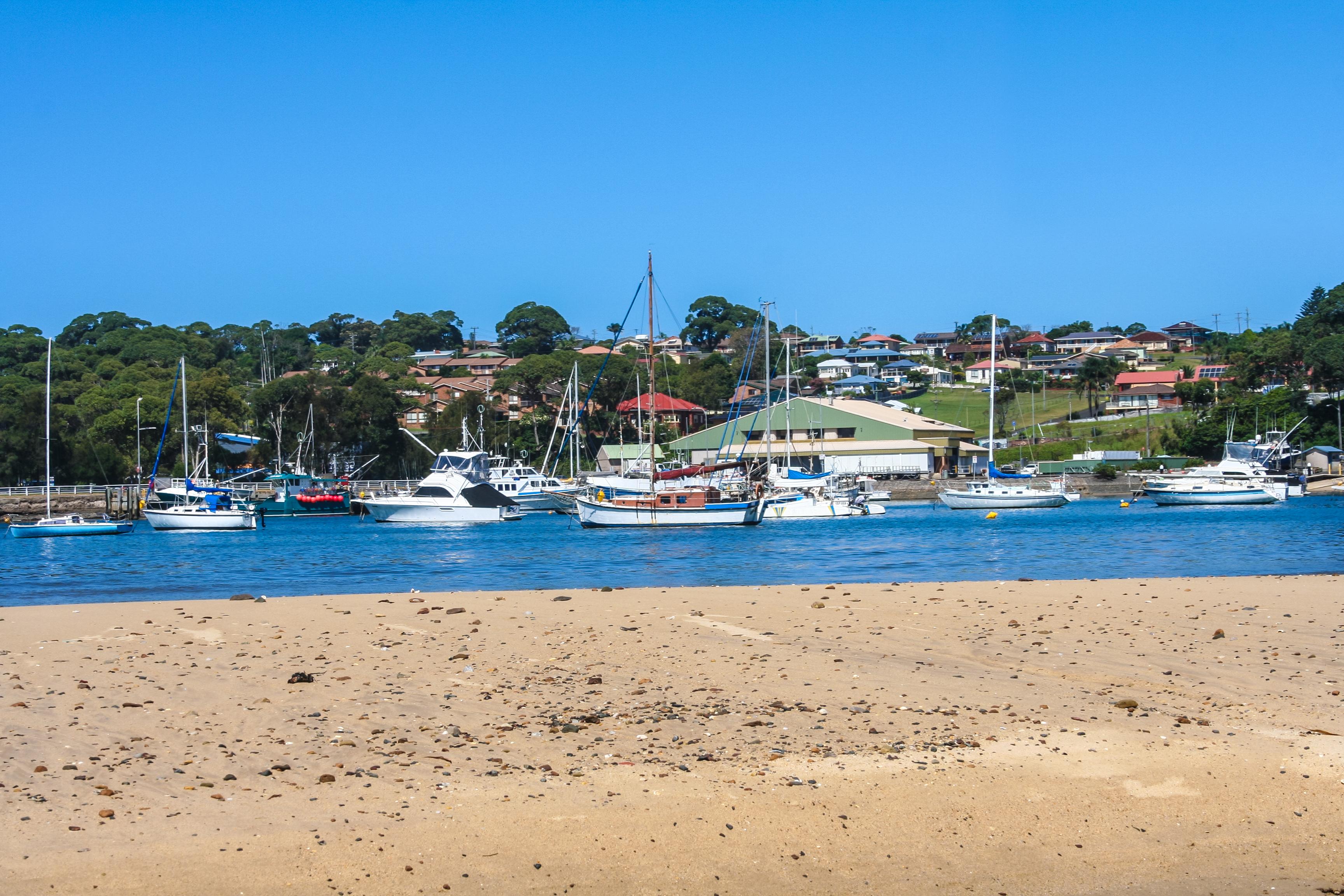 Sydney investors move south
